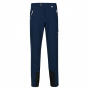 Pantaloni bărbați Regatta Mountain Wntr Trs albastru