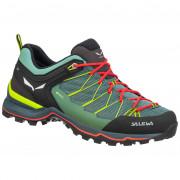 Dámské boty Salewa Ws Mtn Trainer Lite Gtx albastru/verde