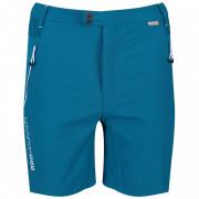 Pánské kraťasy Regatta Mountain Shorts albastru