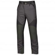 Pantaloni bărbați Direct Alpine Kaiser 3.0 gri