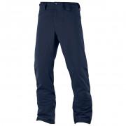Pantaloni schi bărbați Salomon Icemania albastru închis