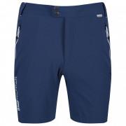 Pánské kraťasy Regatta Mountain Shorts albastru închis