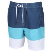 Pantaloni scurți bărbați Regatta Bratchmar VI