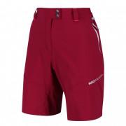 Dámské kraťasy Regatta Mountain Shorts roșu