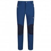Pantaloni bărbați Regatta Questra II albastru