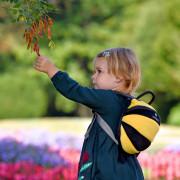 Rucsac pentru copii LittleLife Toddler Bee