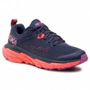 Dámské běžecké boty Hoka One One Challenger Atr 6 albastru/roz